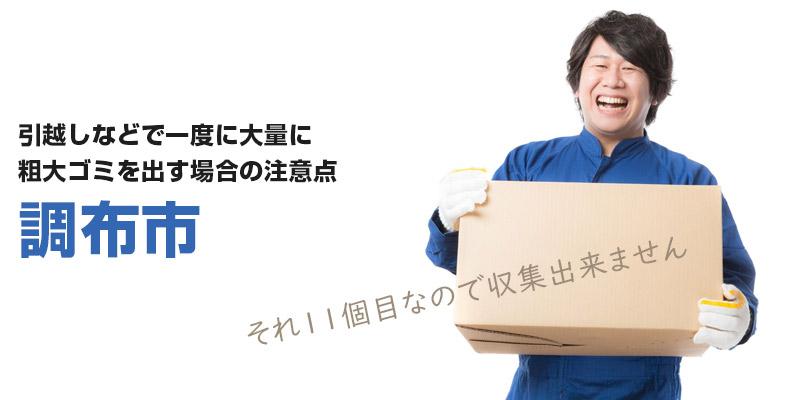 chouhushi_sodaigomi11